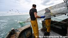 Newhaven fishing boat skipper Neil Whitney (R) and deckhand Nathan Harman (L) clear the fish from the net aboard the Newhaven fishing boat 'About Time' after the second trawl of the day, off the south-east coast of England on October 12, 2020. - Trawling the Channel aboard his boat 'About Time', skipper Neil Whitney is hopeful the UK can net a post-Brexit trade deal with the EU that he insists finally favours British fishing. A European Union summit on Thursday and Friday will attempt to unlock stalled talks with London weighed down by a key future fishing agreement. We want control of our waters, control of our own (fishing) quotas and we have to build a future because at the moment you can't look ahead and try and work out what's going to happen because we've got no control, Whitney told AFP after setting off in pitch blackness from Newhaven, a port on England's south coast. (Photo by GLYN KIRK / AFP) (Photo by GLYN KIRK/AFP via Getty Images)