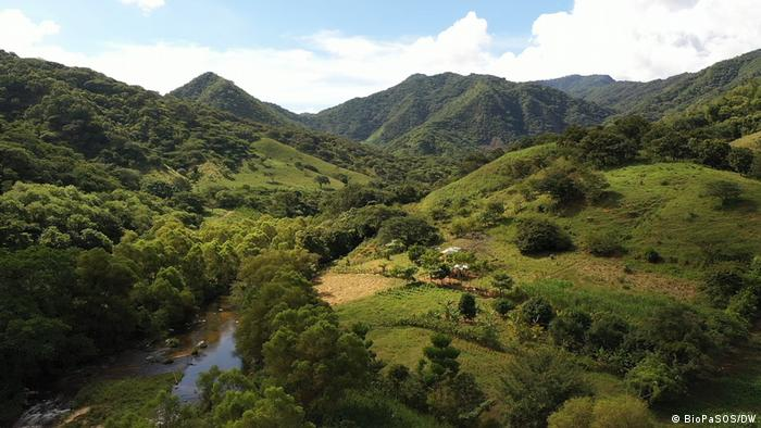 La Sepultura Biosphere Reserve in Mexico