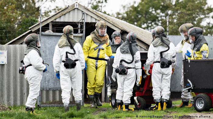 Danish emergency management workers in protective equipment at mink farm