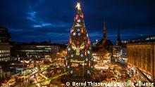BdT Deutschland Weihnachtsbaum Dortmund