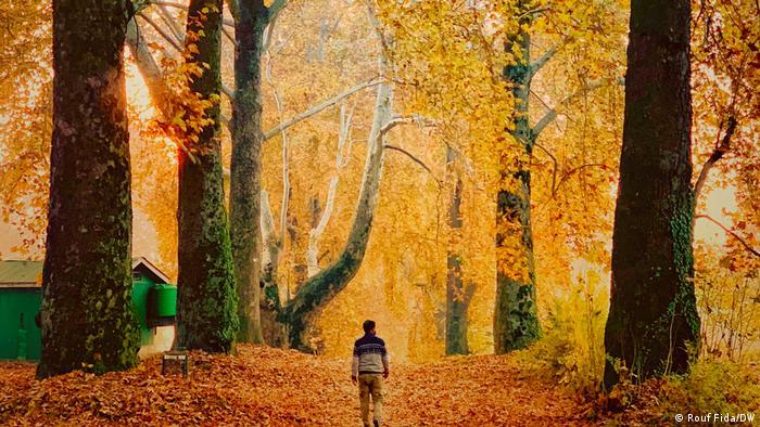 Indien Kaschmir Herbst Landschaft