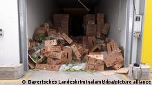 Deutschland | Gerichtsprozess | Kokain in Bananenkisten