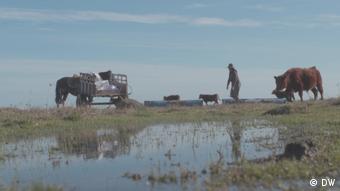DW Economía creativa |Landfrauen in Uruguay |Cristina beim Viehhüten