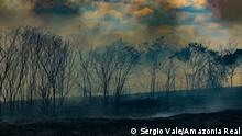 Brasilien Verbrannte Fläche in Rio Branco