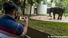 Bagladesch | Coronavirus | Mirpur Tiergarten in Dhaka