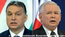 Kombobild Orban und Kaczynski