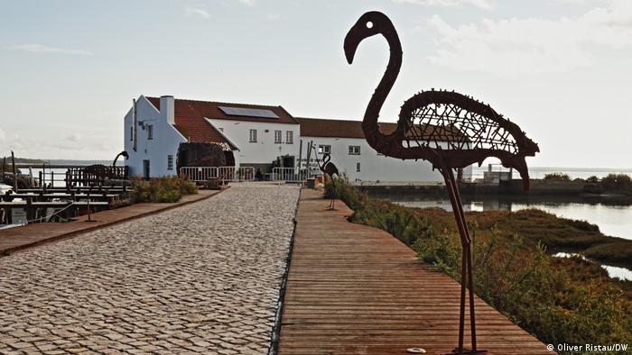 Portugal Wasserstoff aus Sonne und Meer | Flamingo