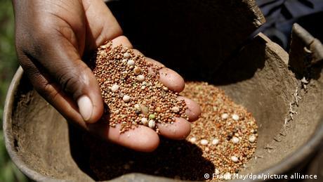 Una mano sacando semillas de un cuenco.