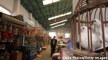 China | Wildtiere Markt Handel