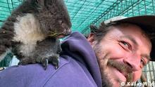 Kailas Wild with the first orphaned koala joey he rescued on his back