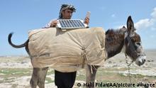 Türkei I Schäfer I Solarzellen