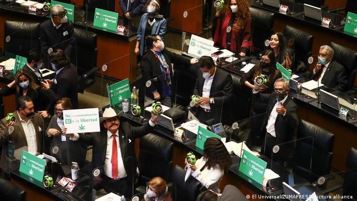 Parlamentares portam placas verdes no plenário do Senado mexicano