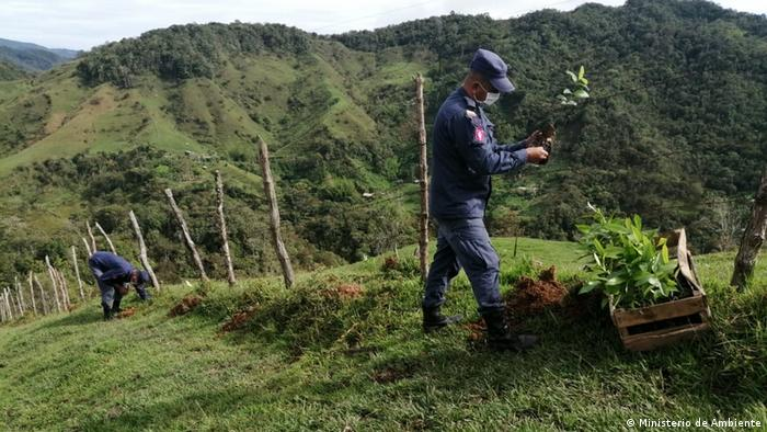 Pressebild Umweltministerium Kolumbien  Wald
