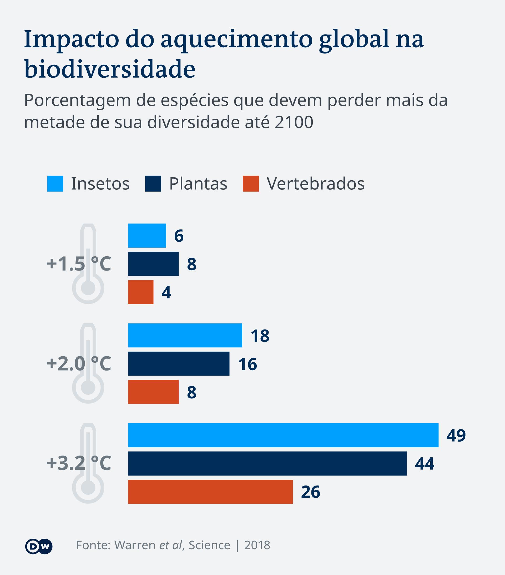 Infografik Insektensterben Artenvielfalt PT