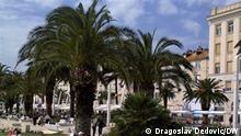 Kroatien Split 2015 | Palmen, Promenade