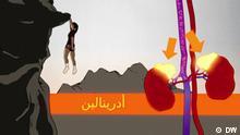 DW Fit und gesund (Arabisch)