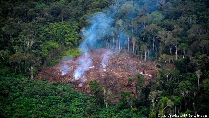 Deforestation in the Amazon rainforest in Brazil