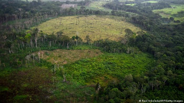 Regiões ricas em biodiversidade são utilizadas para abrir espaços para a pecuária e plantações. Clareira aberta na Amazônia colombiana.