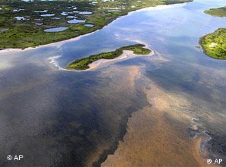 Ölteppich im Golf von Mexiko (Foto: AP)