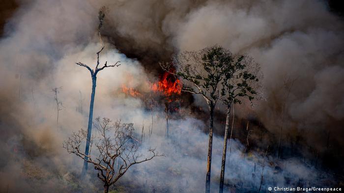 queimada em área de desmatamento recente próxima aos limites da Terra Indígena Kaxarari, município de Lábrea (AM), em agosto de 2020.