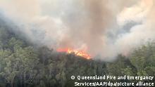 Avustralya'da orman yangınları meydana geliyor