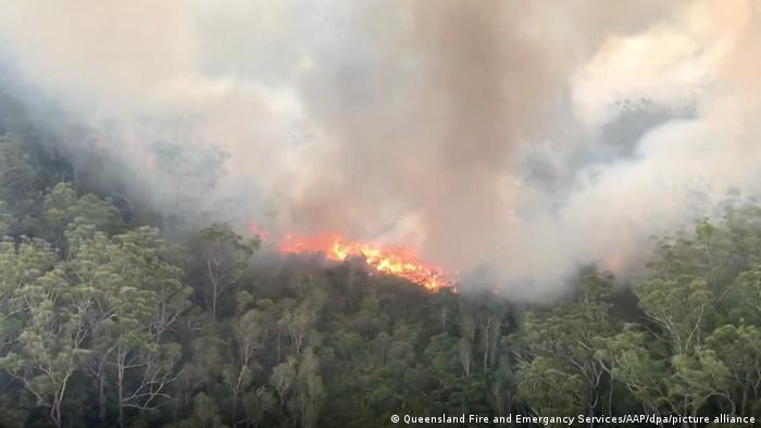 Feuer auf Fraser Island (Australien)