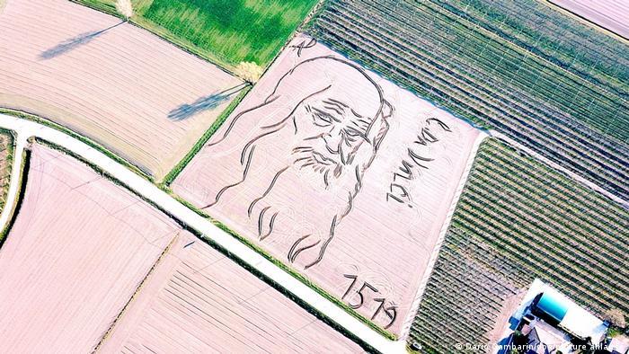 Portrait Leonardo da Vinci in field - land art by Dario Gambarin.