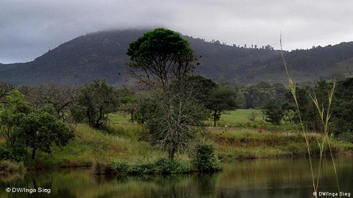 Landschaft um Mbabane, Hauptstadt von Stadt (DW/Inga Sieg)