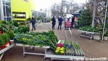 Kundschaft bei Paflanzen-Kölle am Stadtrand von Berlin Foto: Hardy Graupner/DW, 14.12.2020