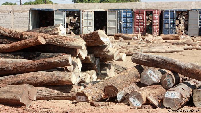 Mosambik | Nampula Beschlagnahmte Koffer