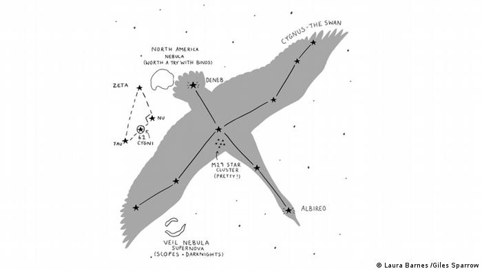 Illustration of the star 61 Cygni and its constellation from the book A History of the Universe in 21 Stars by Giles Sparrow