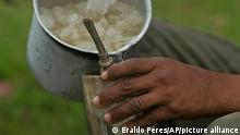 In this May 16, 2017 photo, a cowboy serves Terere, an herbal mate beverage, served ice-cold in an ox horn, in Corumba, in the Pantanal wetlands of Mato Grosso do Sul state, Brazil. Terere is sipped through a silver straw, the personal property of each cowboy. (AP Photo/Eraldo Peres)