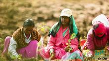 DW eco India Sendung 18.12.2020 | Farmers4forest