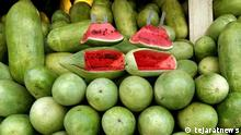 Iran | Yalda Feierlichkeiten | Wassermelonen
