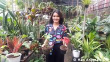 Kamila Aswan Pflanzen Jakarta