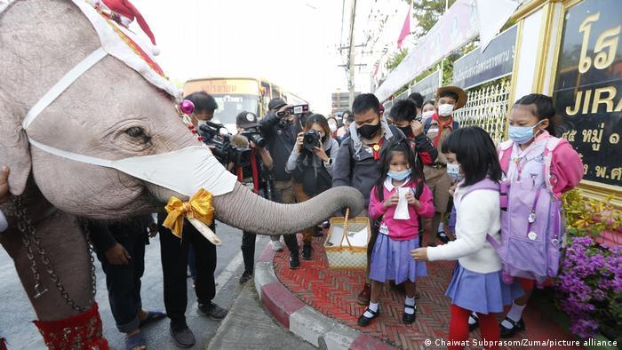 Thailand Bangkok | Elefanten helfen Masken zu verteilen