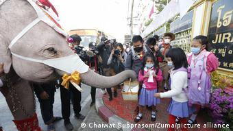 Школьники в защитных масках и слон в наряде Санта-Клауса в городе Аюттхая