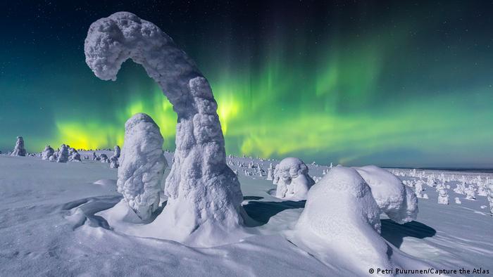 Fotografie von Polarlichtern von Petri Puurunen: Komplett in Schnee eingehüllte Bäume, die nur noch als rundliche Formen erkennbar sind. Dahinter ein hell strahlendes Nordlicht