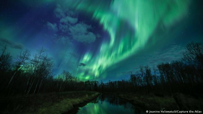 Fotografie von Polarlichtern von Jeanine Holowatiuk: Ein nordisch wirkender Wald mit Birken in einer Moorlandschaft, darüber ein in vertikalen Stäben schimmerndes Nordlicht.
