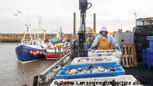 Brexit I Fischerei I Handel mit EU-Ländern