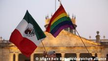 epa05313366 Activists and members of the LGBTI (lesbian, gay, bisexual, trans, and/or intersex) community during a demonstration marking the International Day Against Homophobia, Transphobia and Biphobia, in Guadalajara, Mexico, 17 May 2016. The International Day Against Homophobia, Transphobia and Biphobia is marked annually on 17 May to raise awareness of LGBTI rights violations. EPA/ULISES RUIZ BASURTO ++