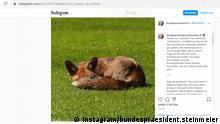 30.12.2020 *** Screenshot Instagram bundespraesident.steinmeier zu Fuchs im Park Schloss Bellevue. Quelle: https://bit.ly/3htFIMF