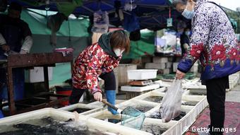 China Wuhan | Fisch-Markt