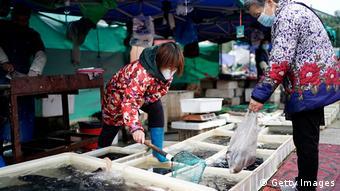 На рыбном рынке в Ухане