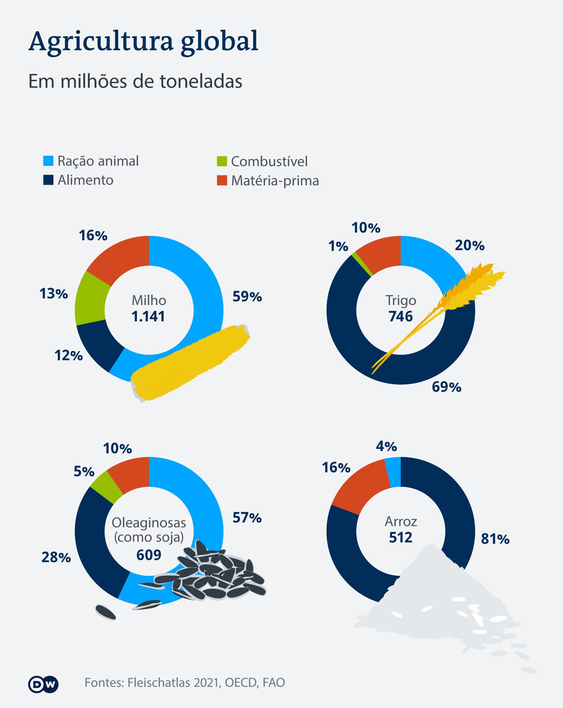 Infografik Fleischatlas Anbau PT