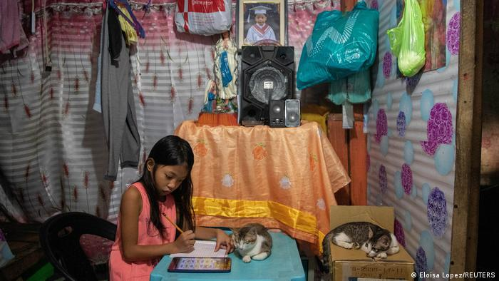 A girl studies at home with two cats