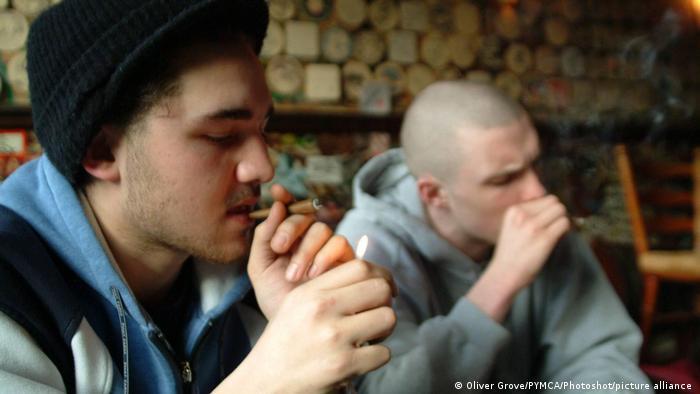 Cannabis users in an Amsterdam coffee shop