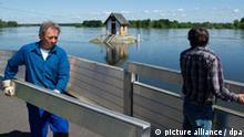 Flut Hochwasser Oder Brandenburg