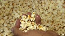 DW Sendung Eco Africa | Popcorn