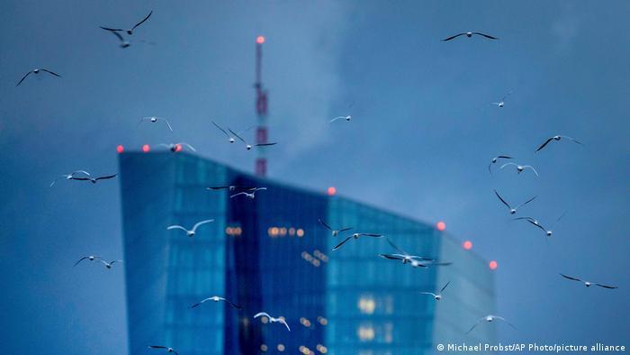Gaivotas voam ao redor do Banco Central Europeu, em Frankfurt